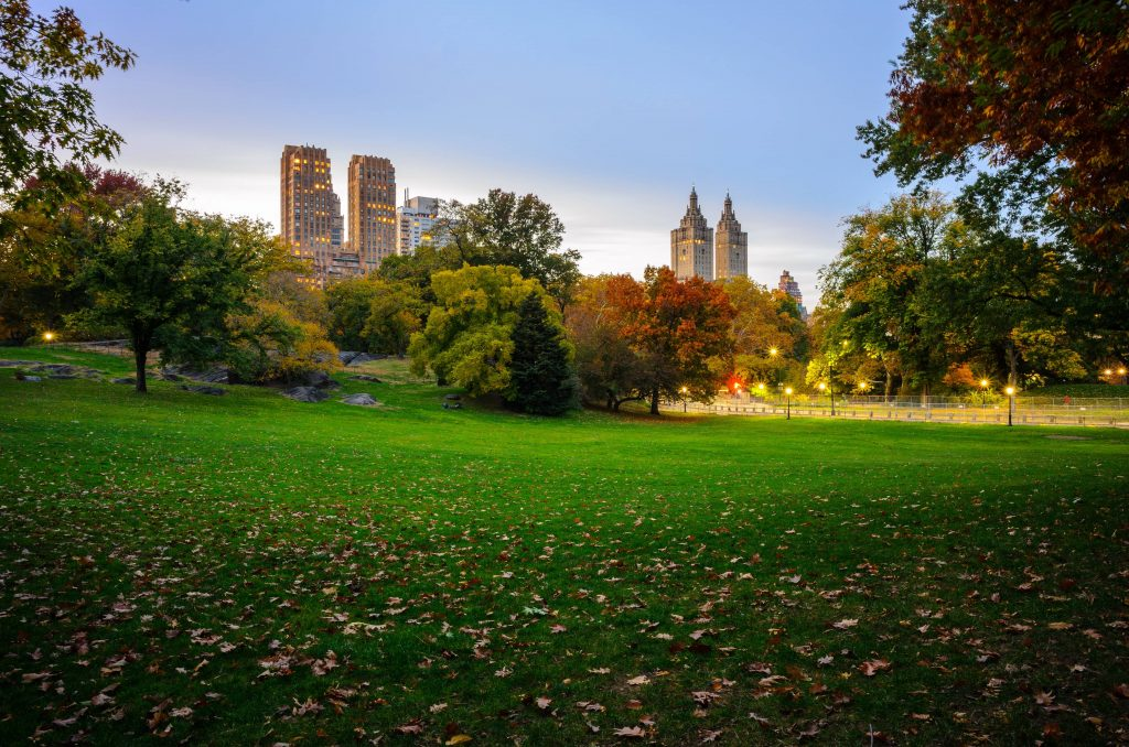Icarus Travellers | Top 20 Destinations in New York: Central Park
